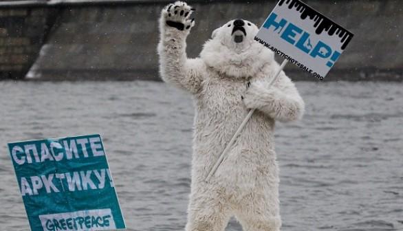 Man In Polar Bear Suit