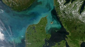 A phytoplankton bloom off the coast of Denmark in a gulf of the North Sea. Off Antarctica, phytoplankton similarly color the water with their numbers.