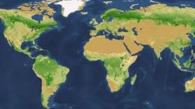Global Map of Tree Density