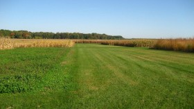 Site of University of New Hampshire Crop Rotation Project