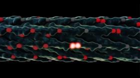 Genetically Enhanced Virus