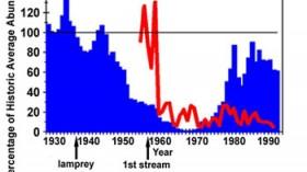 Sea Lamprey Population