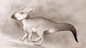 Rare Horned Ceratopsian Dinosaur