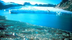 Greenland Due To Global Warming The Ice Cap In The Past 5 Years Has Shr