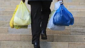 Plastic Bags - The Environmental Scourge