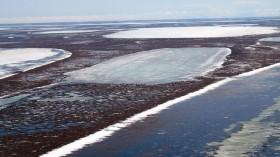 Shallow Arctic Lakes