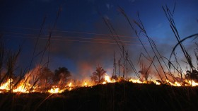 Brazil Faces Environmental Challenges in Amazon Ahead of Rio+20 Earth Summit