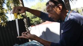 City Of Miami Sprays To Prevent Mosquito-Bourne Illnesses