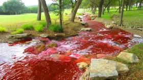 blood river