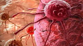 Cancer-cell