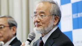 Nobel Prize In Medicine 2016: Yoshinori Ohsumi Of Japan