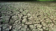 WORST FLORIDA DROUGHT IN 100 YEARS