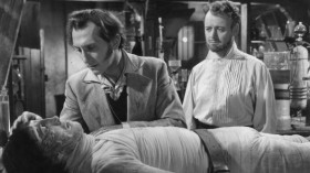 Victor Frankenstein refused to give his Creature a mate. Rightly so, scientists prove.