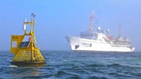 Man's CO2 emissions dissolve sea snail shells off U.S. West Coast