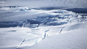 Antarctica ice shelves could collapse in the next 100 years