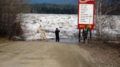 Yukon River Basin's permafrost loss could have global effects