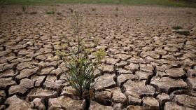Severe Drought