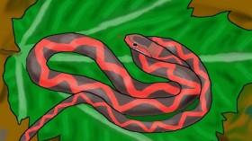 'Winged Serpent' Zilantophis schuberti