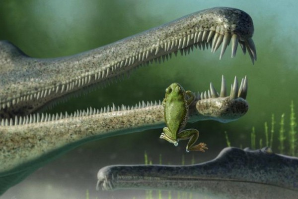 A concept rendering of a Chinle frog, inside the jaw of a phitosaur.