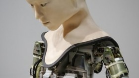 If Robots Had Nervous Systems, How Would They Feel?