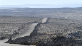 A general view of the damage done to the Flinders Chase National Park after bushfires swept through on Kangaroo Island