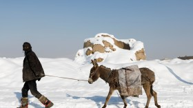 An Afghan man walks with his donkey in a snow-covered street in Kabul