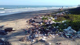 Plastic Pollution Crisis: More Plastics than Fishes in the Ocean by 2050, Envi Group Warns