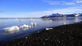 Melting of Arctic Permafrost Brings Long-Dead Viruses Back