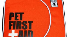 Top Picks: First Aid Kits for Dogs