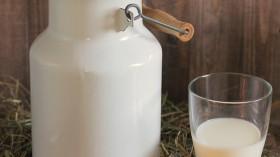 New Study Says Unpasteurized Milk Harbors Many Drug-Resistant Genes