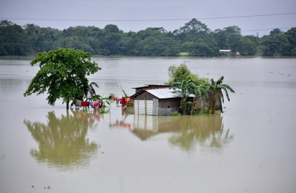 Nature World News - South Asia Floods: Death Toll at 550, Millions Displaced, Looming Humanitarian Crisis