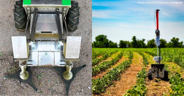 Nature World News - Robotics and Farming: How Tiny Robot Swarms Can Contribute to Eliminating the Need for Pesticides