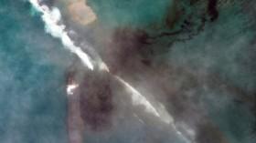 Nature World News - A satellite image shows MV Wakashio
