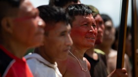 Providing for Indigenous Property Rights will Help Provide Protection to the Amazon Rainforest