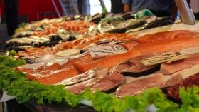 Five Popular Seafoods in Australia Had Microplastics – Study