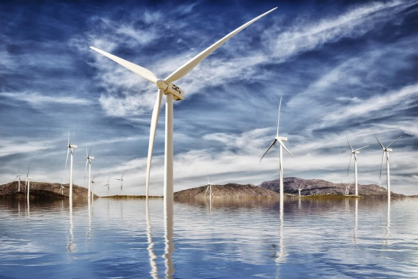 How to Minimize Bird Deaths from Wind Farms