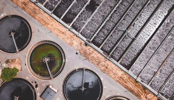 Nature World News - 30,000 Tons of Sewage Sludge from Netherlands to Enter UK