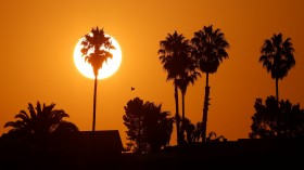 Labor Day Holiday Weekend: Record Heat Temperatures of More Than 50 Million in the US