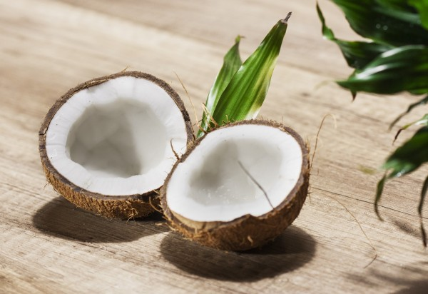Production of Cheap Biodiesel and Bioethanol from Coconut Waste