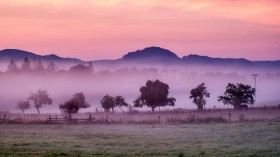 New Five-Year Carbon Market Pilot Program Gives Conservation Funding for Land Trusts