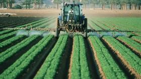 EPA Denies Chlorpyrifos Pesticide Capacity to Affect Child Brain Development
