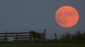 October 2020: A Rare Blue Moon Month