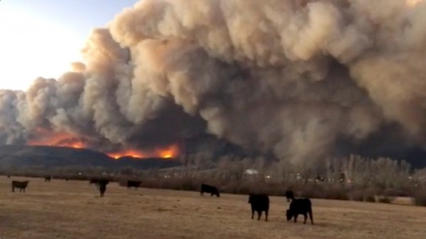 Colorado Wildfires: Snow hits Cameron Peak, Fire Advances to East Side of Rocky Mountain National Park