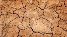 Billions of Tons Carbon in Soil will be Released if Global Warming Reaches 2 Degrees