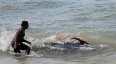 100 Beached Whales Rescued in Sri Lanka after Mass Stranding
