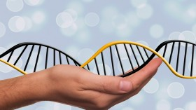 The Merits of Using DNA to Revive Extinct Animals and Plants
