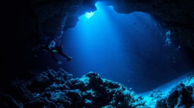 The Mariana Trench and Other Pacific Ocean Trenches Get Toxic Mercury from Fish Carcasses