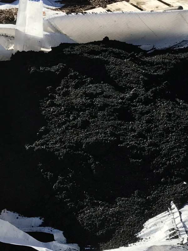 Biochar Created from Agricultural Waste Adsorbs Wastewater Contaminants
