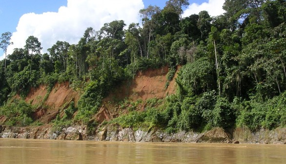 Peru's Amazons: Mind ponds Increased Poisoning Risks for Humans and Wildlife