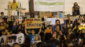 Record High Brazil Deforestation Level in the Amazon Recorded in the Past 12 Years